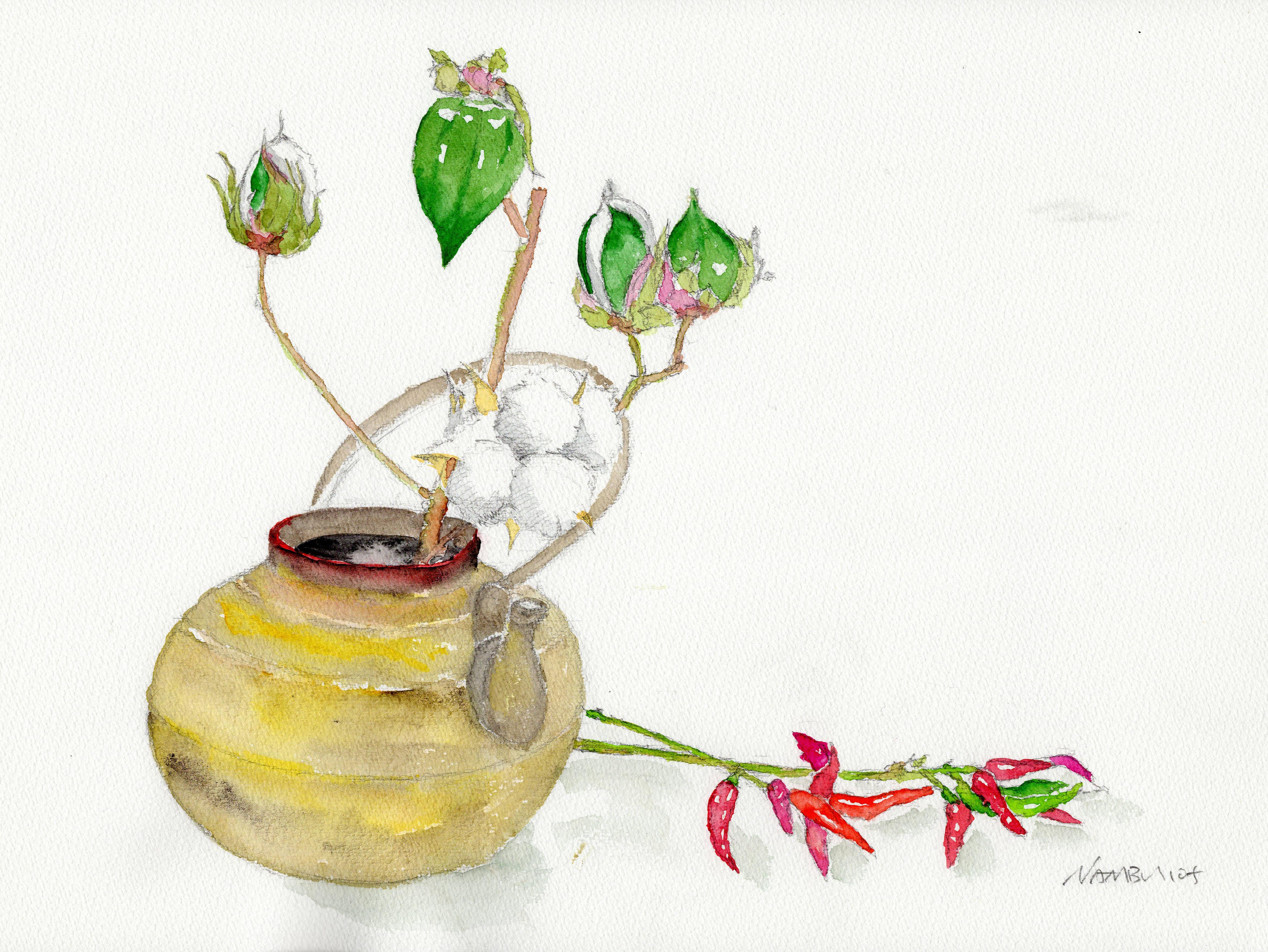 綿の花と土瓶