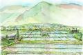 信州の田植え